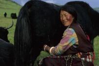 tibet_orientale006.jpg