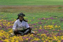 tibet_orientale010.jpg
