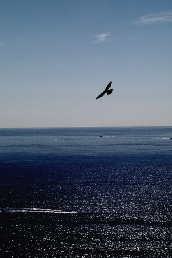 Fly over Mediterranean Sea France 2003