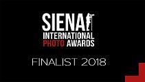 Finalist__Logo_2018__1_.jpg