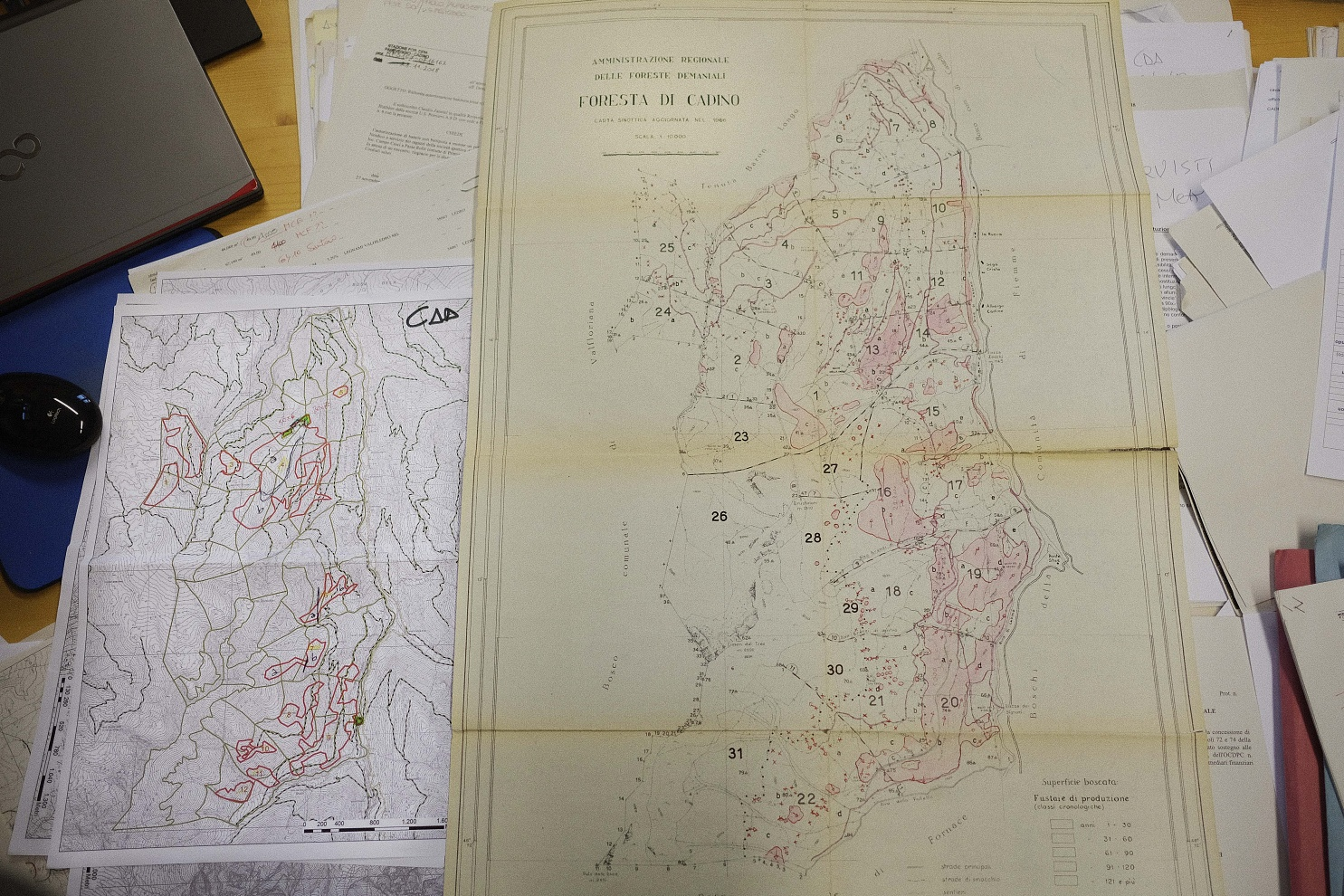 Confronto delle aree cadute nella foresta di Cadino (TN) tra la tempesta del 29 ottobre 2018 e quella del 1966. - La tempesta del 29 ottobre 2018 è stata paragonata all'alluvione del 1966. Da una cartina dell'epoca si evince che alcune aree sono effettivamente sovrapponibili. Guardando la cartina, si vede come la parte sud-est della foresta di Cadino (TN) fosse stata abbattuta in maniera del tutto identica al 1966, ma nel 2018 vi sono anche aree nord e nord-ovest che sono andate a terra.