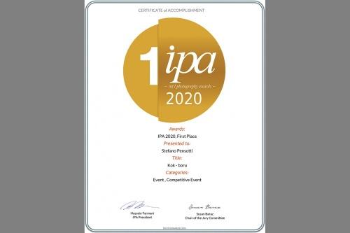 ipa - International Photo Award - New York 2020