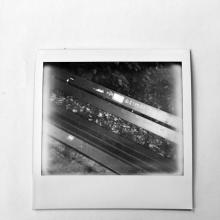 Diary of October - Ordinary Life 2021 by Polaroid
