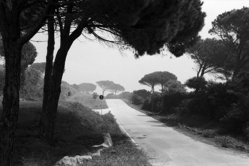 Railroad Tracks to Sardinia Fine Art