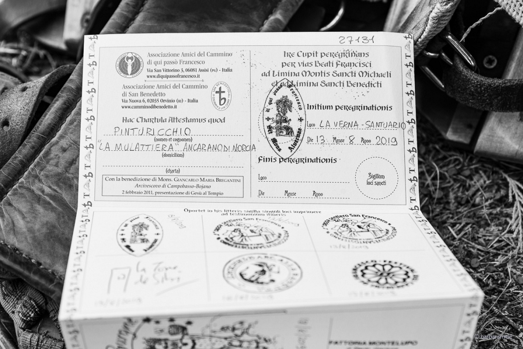 The Pilgrim's Passport - Pilgrims who stop at the Hermitage of San Pietro in Vigneto, as well as at any other stations along the Way of Saint Benedict, will get a stamp on the Pilgrim's Passport, as evidence of their passage. Pinturicchio, the Donkey, had its own passport, too.